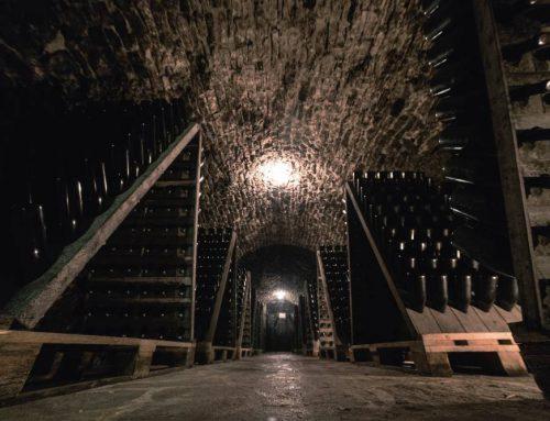 Cantina Balter: dove il tempo rende il vino speciale
